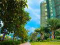 海月半岛大厦项目现场